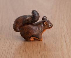 Douglas squirrel animal totem. by lifedancecreations