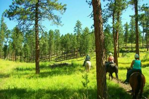 SD Black Hills 25 by HopeGallops