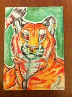 crowley tiger aceo 2 by nightspiritwing