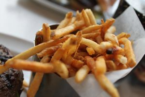 Fries ... Damn Good fries ... by Miss-succubus