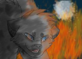 Ashfur's gone mad by Sootfrost1