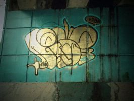2011 Riser new style by Riserist