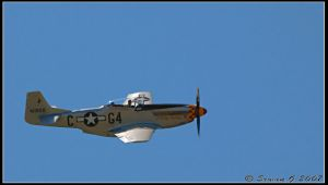 North American P 51 D Mustang by Balto-Wolf
