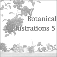 Botanical Illustrations 5 by butnotquite