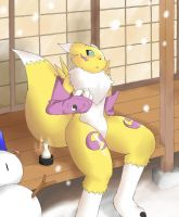Renamon in the Snow by Brydog23