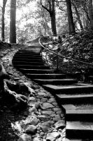 S Stairs Black and White by doninator