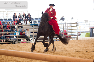 Sidesaddle Friesian_6 by CalyHoney