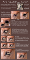 UPDATED EYE TUTORIAL by frenziiied