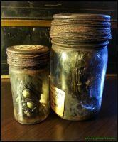 Starkweather-Moore Expedition Specimen Bottles by JasonMcKittrick