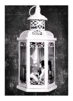 Lantern by Voodoo--Dolly