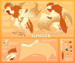 Ginger ref 2017 by Panoptos