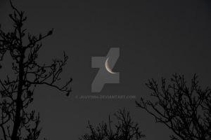 Project 365 - 037 - Just A Sliver by jguy1964