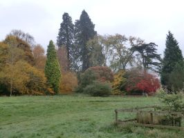 Ealry autumn glory by GriggsTheWhore