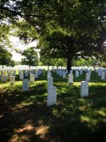 Visit to Arlington by lily314