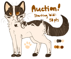 Kitty Auction Paypal and Points! by NovaTrinity