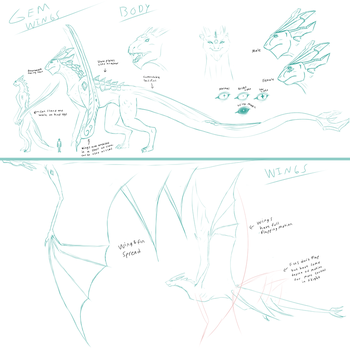 Gem Wing Anatomy-concept sketches by CrystalCircle