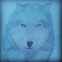 Jumoing Wolf - Detailed by Carlitos-Girl