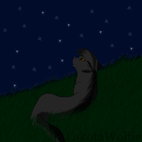 Warrior Cats || Looking To The Stars by LakotaWolfie
