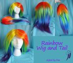 Rainbow Dash Styled Wig and Tail by bluepaws21