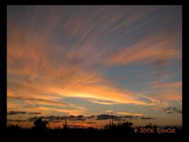 Wild Haired Cloud March Sunset by RooCat