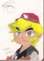 Toon Link by Master-wolf149