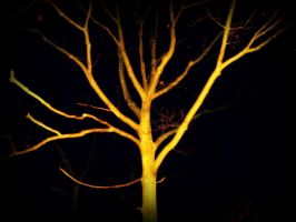 Tree Of Foreboding by RizmyRizmy