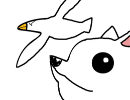 Seagull and Arctic fox by Captainpikachu