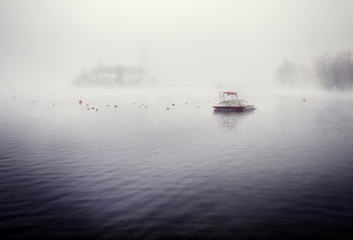 Waiting for nothing - ducks, fog and a boat by 8moments