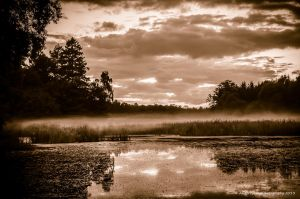 Snogeholm -Misty Evening by AndersStangl
