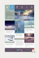 Wordpress winter theme by Zoltons