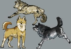 dogs by Andiliion