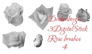 Rose brush pack 4 by 3DigitalStock