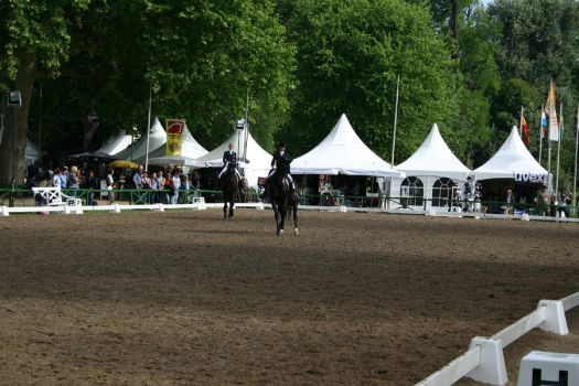 Riding Arena Stock 11 by LuDa-Stock