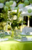 Spring Green Wedding by mom-the-bomb