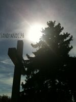 Project 365, day 208: The Work of God by sandyandi146