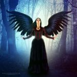 Angel the forest by mohammad1214