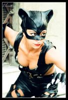Catwoman 2. by Elessar777