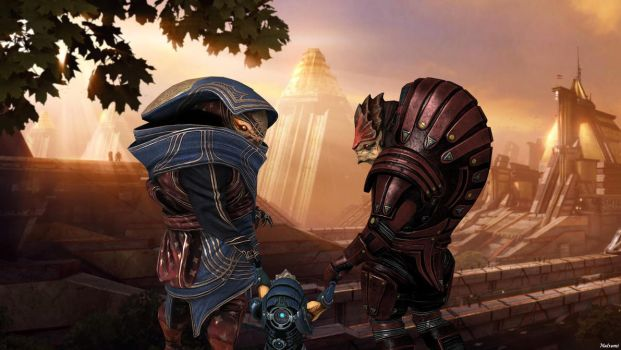 A future for the Krogan by Natsumi494