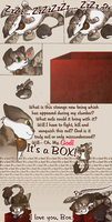 Enter a Box by damphyr