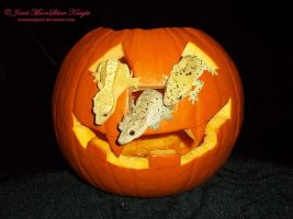 PUMPKIN AND THE RUNAWAY GECKOS! by NocturneJewel