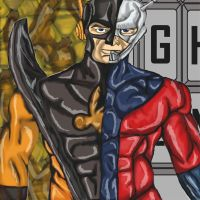 Marvel Avengers : Ant Man and Yellow Jacket by dragonfire53511