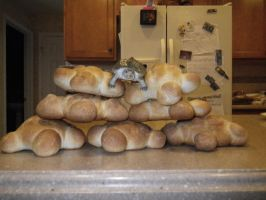 THE TOP BREAD IS A LIE by Tsuchiichi