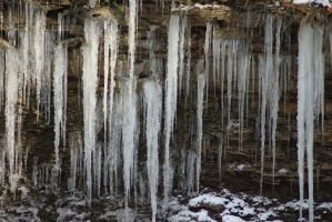 Icicles by timseydell