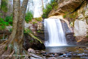 Looking Glass Falls 1449 by TommyPropest-Candler