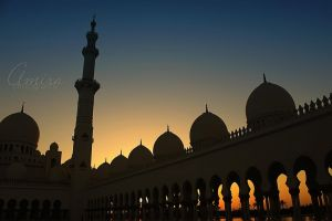 Zayed mosque 2011 by amirajuli