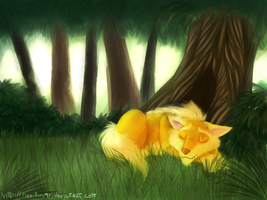 Nap Time by Aeritus91