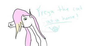Request: Freya the cat as a horse by Meme00