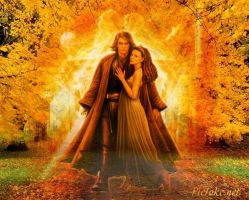 Anakin and Padme Wallpaper 2 by weissdrum