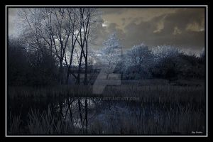 Marshland by crazy1ady