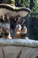 fountain in Rome by ereglin
